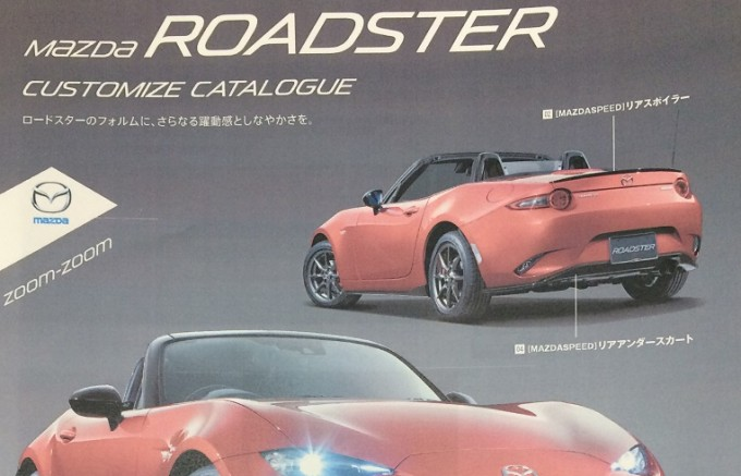 Roadster-customize-catalog
